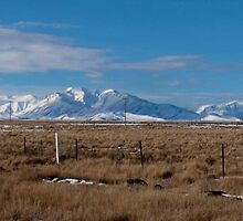 Panarama of Snowy Mountain Tops  and flat tussock land by trevallyphotos