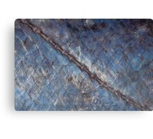 Abstract macro of barracuda lateral line Canvas Print