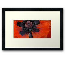 Hypnotic Scarlet Framed Print
