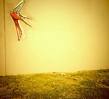 Fly Away - Portland, Oregon by KeriFriedman