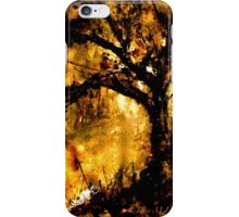 Landscape...Mysterious Kor iPhone Case/Skin