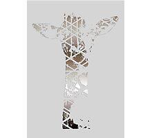 Silver Giraffe Photographic Print