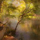 Moonbeam Dream by Susan Werby