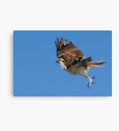 A Leap Above the Ocean Canvas Print