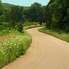 Country Road by Susan Blevins