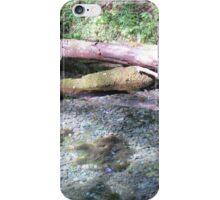 Stones in a Brook iPhone Case/Skin