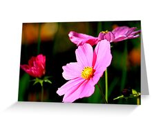 Pink and Yellow Cosmo Greeting Card