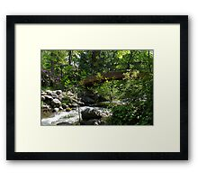 Ashland Creek Framed Print