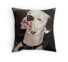 Zen Boxer Throw Pillow