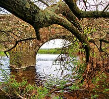 Bridge Over The River Stour by Clive
