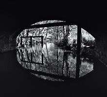 If Monet had seen in black and white by clickinhistory