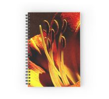Instant Enchantment Spiral Notebook