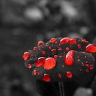 Redbubbles by Josie Jackson