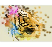 Tiger Ink Photographic Print
