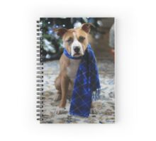 Holiday Warmth Spiral Notebook