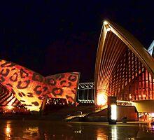 Sydney Opera House by Jennifer Bailey