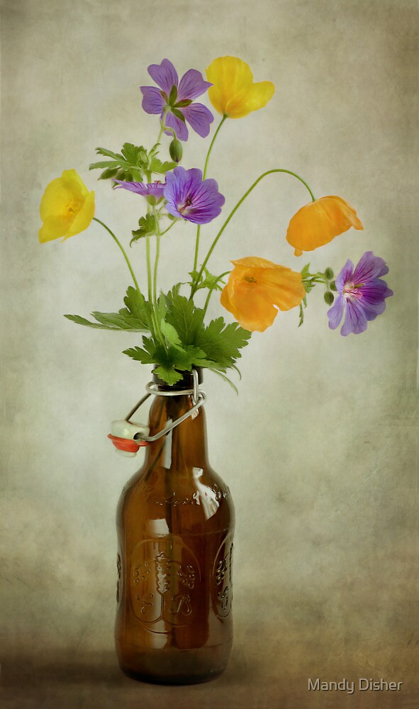 Poppies and Cranesbill by Mandy Disher