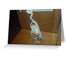 skeletal pinguin Greeting Card