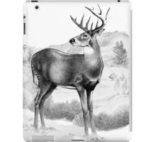 White-tail Stag Sniffing the Air iPad Case/Skin