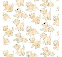 Oliver Pattern! Photographic Print