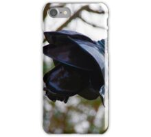 The Black Rose - Lithgow History Avenue iPhone Case/Skin