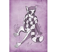 Lemur Chic Photographic Print
