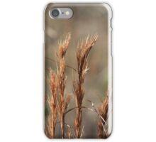 """Desert"" iPhone Case/Skin"