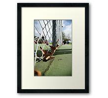 Nature Crisp Framed Print
