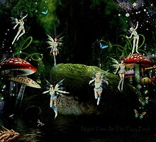Night Time At The Fairy Pond by Vanessa Barklay