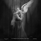 "Wings of Desire IV - V ""What Lies Behind The Veil"" by Darren Vannoy"