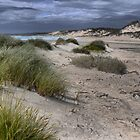 King Island Sands  ( 5 ) by Larry Lingard-Davis