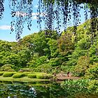 Imperial Palace Garden by Kim Andelkovic