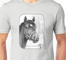 Stare of the Stallion - Sound Reason (Can) Unisex T-Shirt