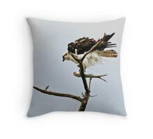 10-140 ~ Osprey's feathers blow in wind Throw Pillow
