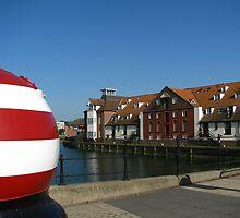 The Bouy and Stoke Maltings, Ipswich by wiggyofipswich
