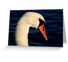 The Mute Swan Greeting Card