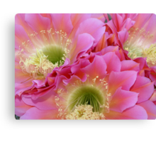 Neon Flowers in the Desert Canvas Print