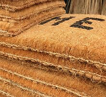 rug by bayu harsa