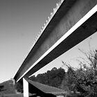 Bridge by Ginger  Barritt