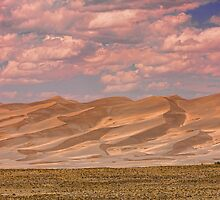 The Great Colorado Sand Dunes  177 by Bo Insogna