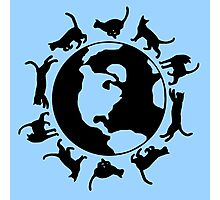 Cats Run the World (Blue) Photographic Print