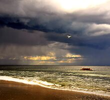 light in the storm by Tania Palermo