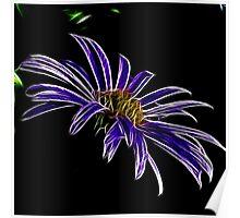 ~ Black & Blue ~ Poster