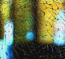 Crackling glass and color by Thad Zajdowicz