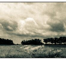 Storm Clouds Over A Meadow With Trees  Bucyrus Ohio by Mitch Labuda