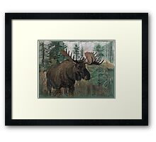 The Moose Framed Print