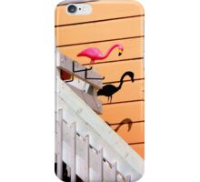 The Shadows Know For Sure iPhone Case/Skin
