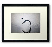 seagull flying over water Framed Print