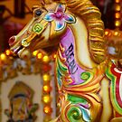 Beau The Beautiful Carousel Horse by Sandra Cockayne