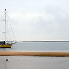 boat on the ria formosa by dcordeiro